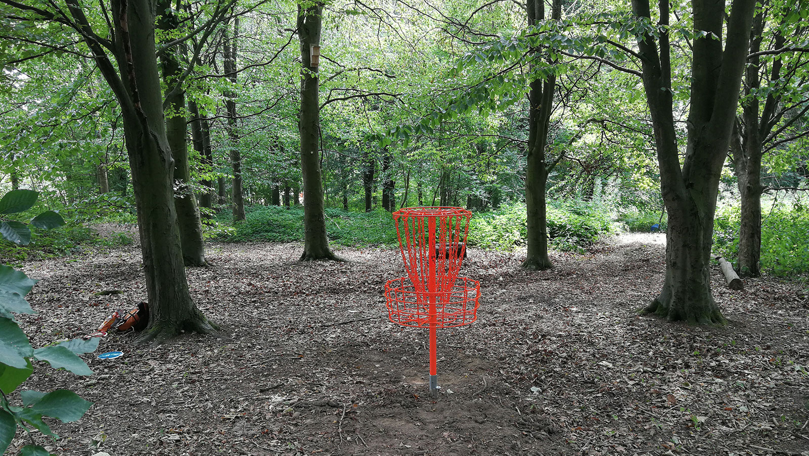 Telford Town Park Disc Golf Course